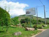 Au Domaine PAUL Champier, le Brouilly 2013 élu vin de l'été par nos clients : comment le consommer ?