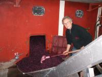 La naissance d'un grand millésime au cuvage du Domaine Paul Champier à Odenas en AOP BROUILLY et COTE DE BROUILLY