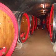 cuve vin